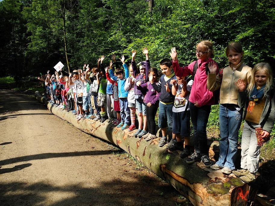 20150711 Schüler auf Baum